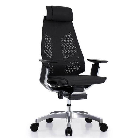 כסא עבודה ארגונומי ואורטופדי לישיבה ממושכת של עד 14 שעות דגם GENIDIA רשת מבית COMFORT, , large image number null