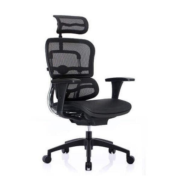 כסא עבודה ארגונומי ואורטופדי לישיבה ממושכת של עד 14 שעות דגם ERGOHUMAN מבית Comfort, , large image number null